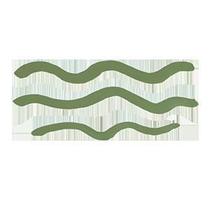 Symbol Wasser
